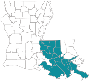 State map of Louisiana with parishes highlighted for Choices 65