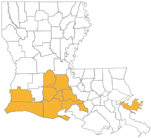 State map of Louisiana with parishes highlighted for Choices Gold