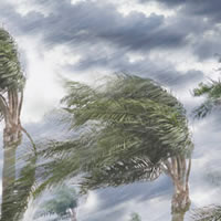 Message to Peoples Health plan members regarding Tropical Storm Nate and Tropical Storm Harvey in August