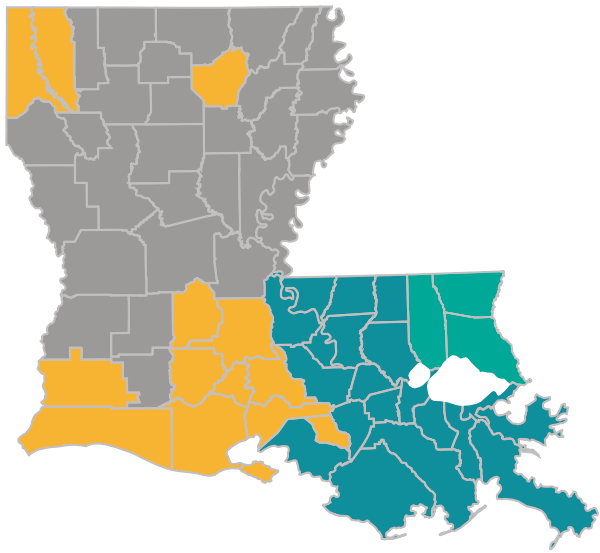 Louisiana map with the Choices #65 parishes highlighted