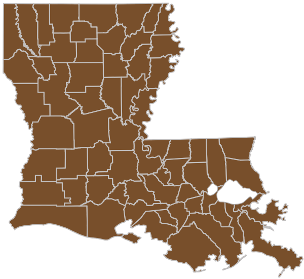 Image of the state map of Louisiana with all parishes highlighted brown to denote Group medicare parishes