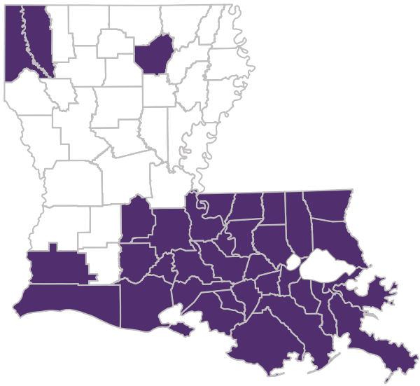 Image of the state of Louisiana with all of the applicable Secure Health parishes highlighted purple