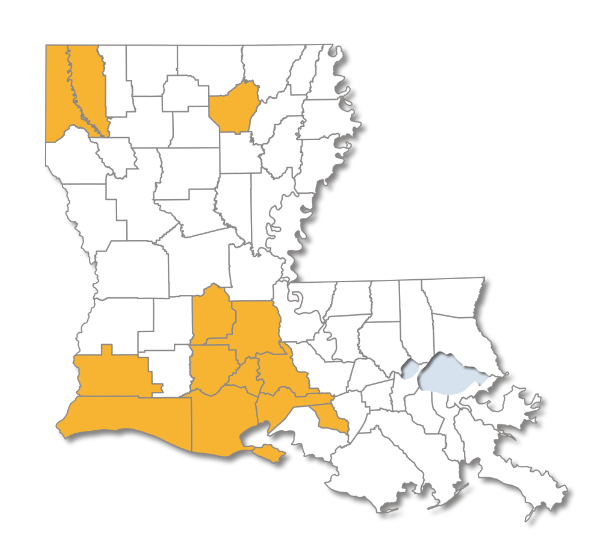 Louisiana map with Choices Gold Parishes Highlighted