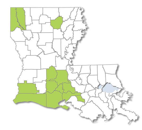 Louisiana map with Choices Value Parishes Highlighted