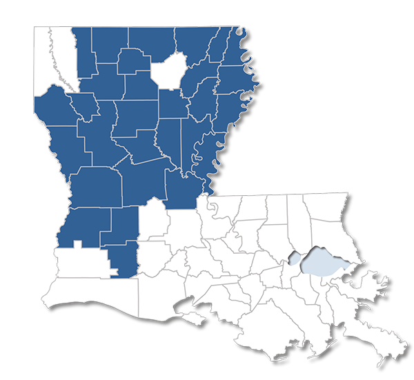 Louisiana map with Secure Choice #011 Parishes Highlighted